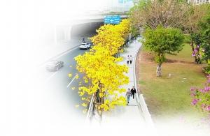 http://www.weixinrensheng.com/caijingmi/2583574.html